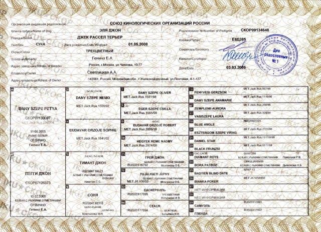 Родословная союза кинологических организаций России